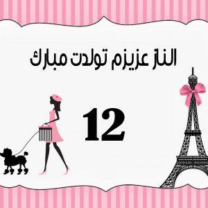 بنر تولد پاریس طرح شماره 1
