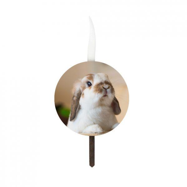 شمع تولد سفارشی تم اردک